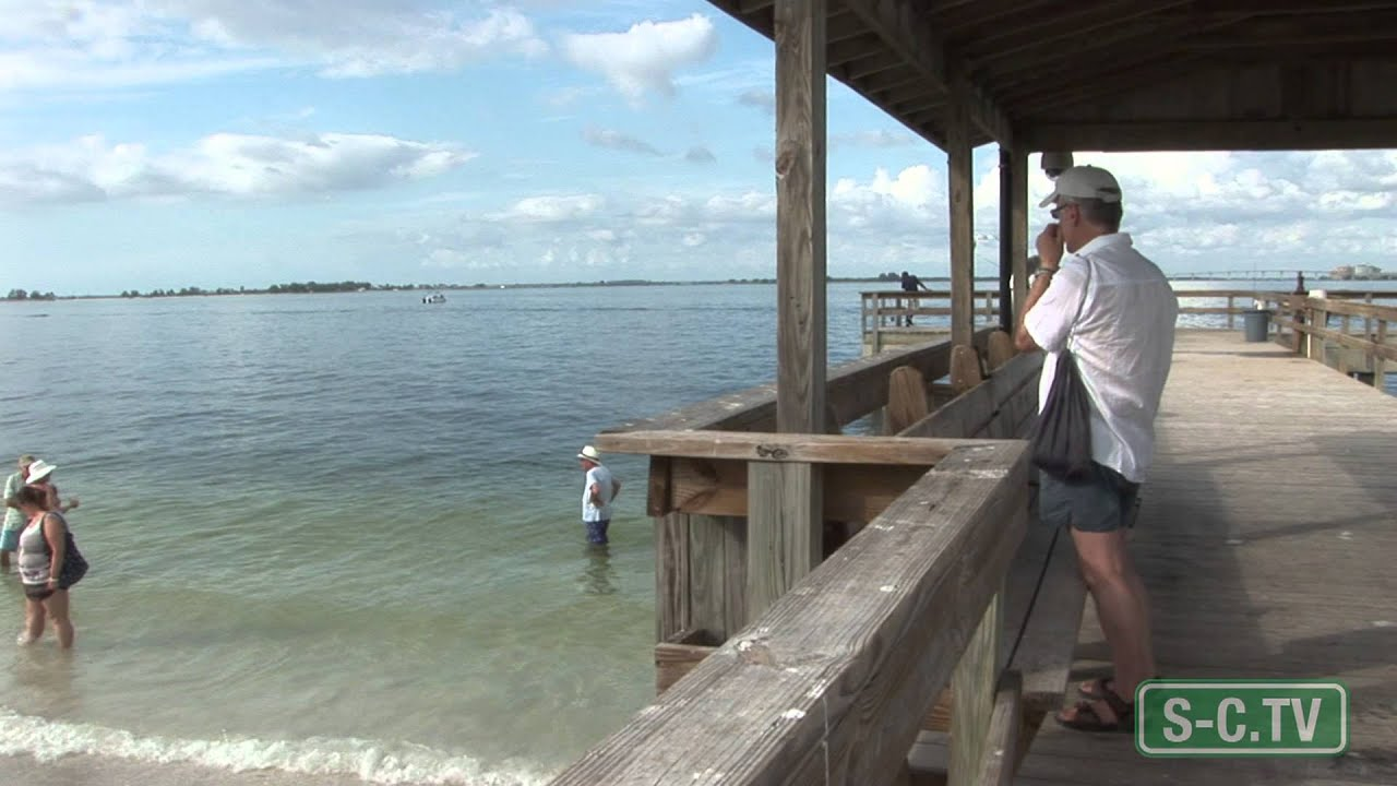 Sanibel fishing pier youtube for Sanibel fishing pier