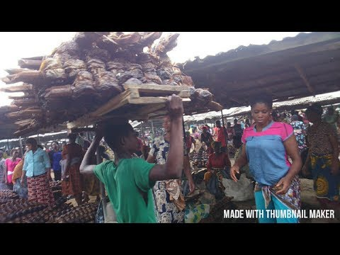 A VISIT TO THE BIGGEST FISH MARKET IN AFRICA. # CLICK TO SUBSCRIBE BELOW
