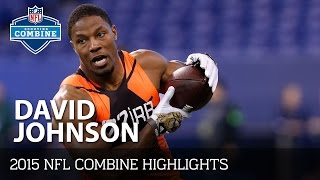 David Johnson (University of Northern Iowa, RB) | 2015 NFL Combine Highlights