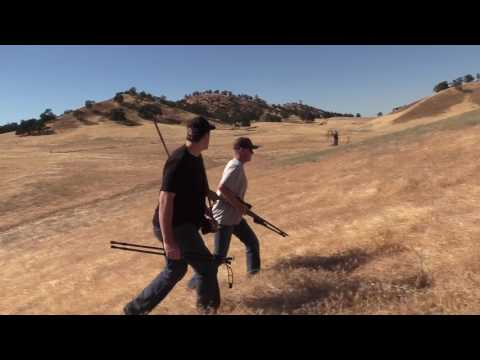 WILD PIG HUNTING IN CALIFORNIA