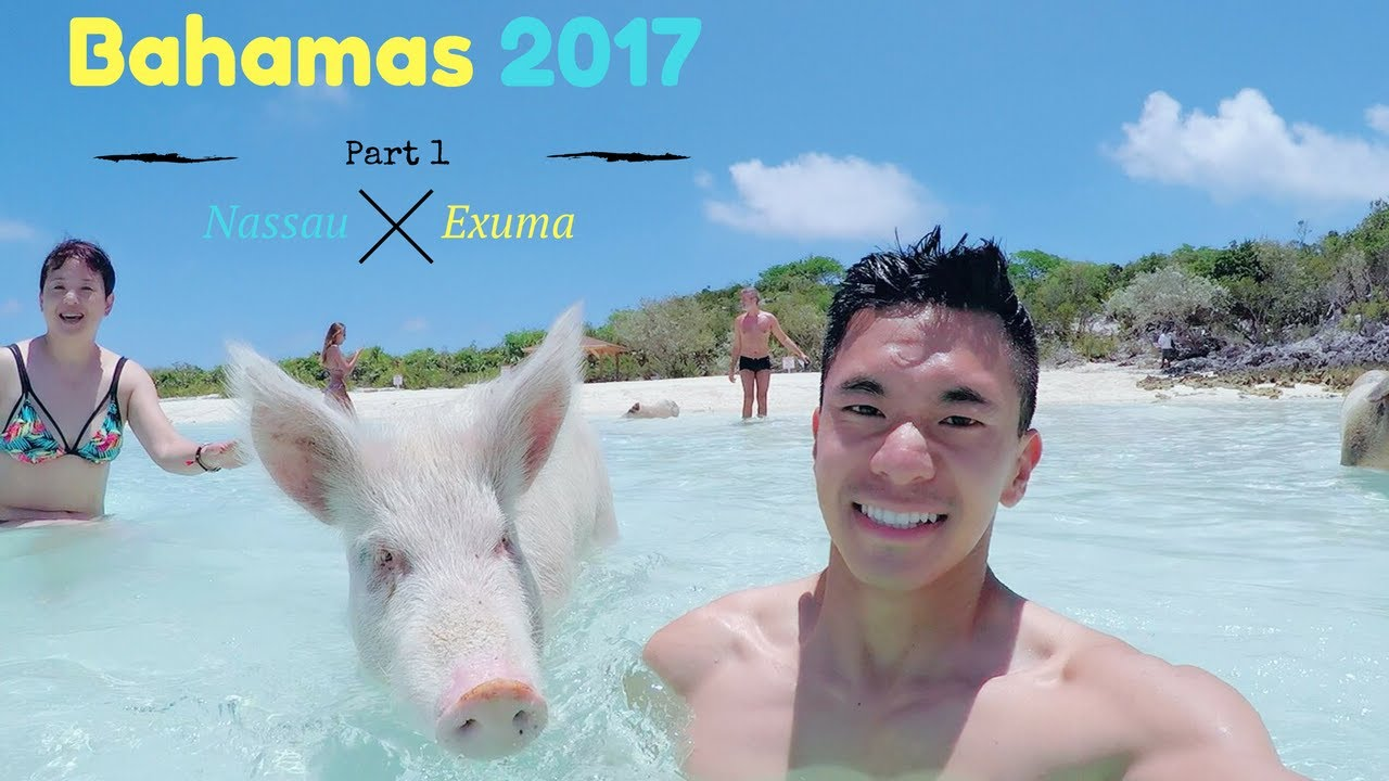 Bahamas Part 1: [Nassau | Exuma] Swimming with pigs!! - YouTube