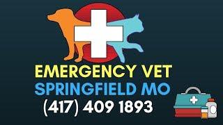 24 Hour Emergency Vet Springfield MO | Emergency Vet Clinic Springfield Missouri | (417) 409 3981
