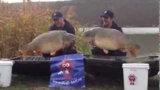 Dudi Bait - CARP FISHING HARSANY 2013