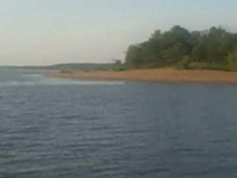KK Island Truman Lake MO Pro Hybrid Bass Guiding Service