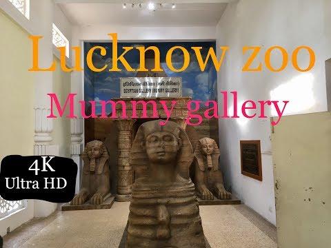 (मम्मी संग्रहालय लखनऊ चिड़ियाघर)  Mummy Gallery Lucknow Zoo (State Museum)