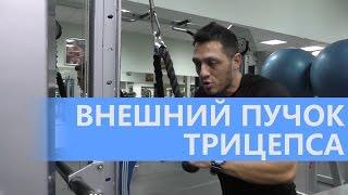 видео Как правильно выполнять жим узким хватом для проработки трицепса