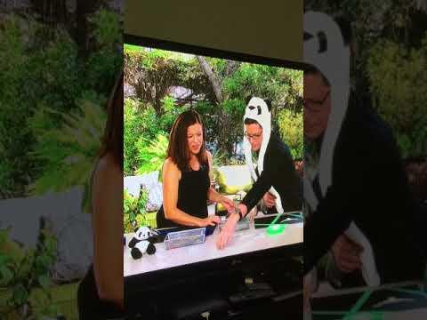 Angela Kennedy talks about the Bullock
