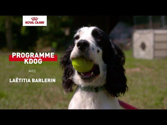 NYKIOS et MILOU, chiens détecteurs de tumeurs, ROYAL CANIN® soutient l'institut Curie