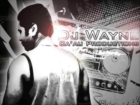 DJ Wayne - Cina Dui Roka [Fijian Remix 2013]