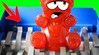 Schredder frisst Lucky Bär und sein Spielzeug auf