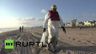 Une substance inconnue et dangereuse poussée vers le rivage californien