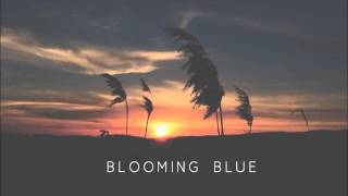 Blooming Blue- Nightbus( Lucy Rose cover)