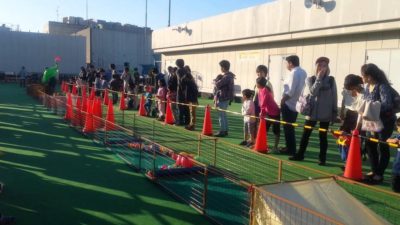 JapanForever In diretta dal Giappone - Mini buta racing (gara di maialini)