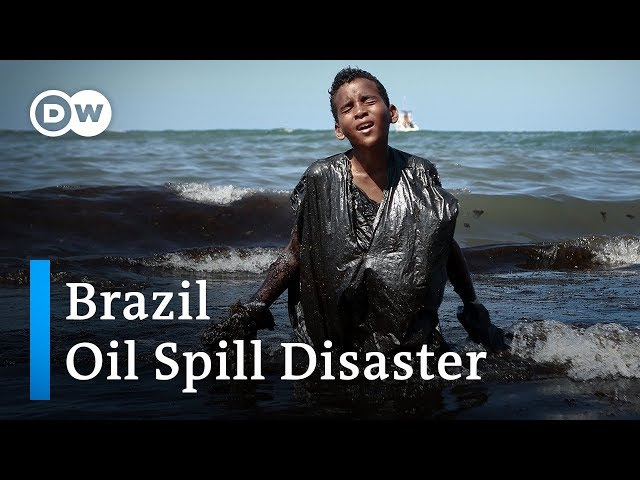 Who is to blame for a devastating oil spill near Brazil? | DW News