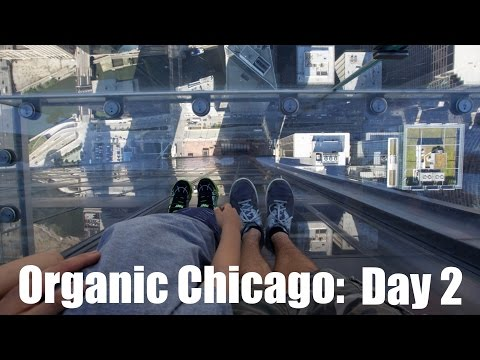 Organic Chicago Day 2 - SkyDeck, Museum of Science and Industry, Local Root and the Navy Pier