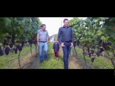 Singletree Winery | Singletree Winery Abbotsford British Columbia