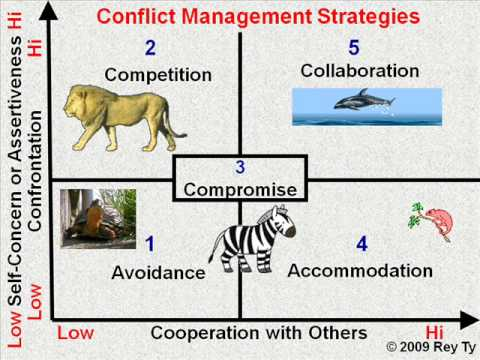 Conflict Management Strategies -- Rey Ty