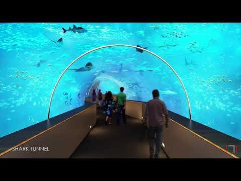 Walk through of Aquatics Gallery in Gujarat Science City Mp3