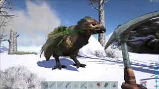 Ark Ragnarok: EVEN EASIER OIL AND PEARLS!!!