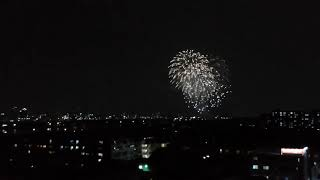 はじまりの花火 ゲリラ花火大会 大阪府浜寺公園