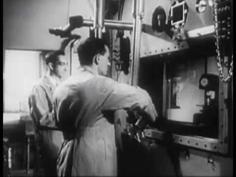 Oppenheimer, Fermi, and Einstein Urge Roosevelt to Commence the Manhattan Project