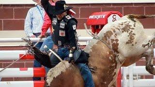 João Ricardo Vieira wins Bull Riding Round 2 - 88,00 ● Calgary Stampede 2015