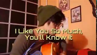Download lagu I Like You So Much, You'll  Know It - Honey Jemlan (Cover) | adanbahrun