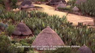 Ethiopia's Youth On The Road To Sustainability