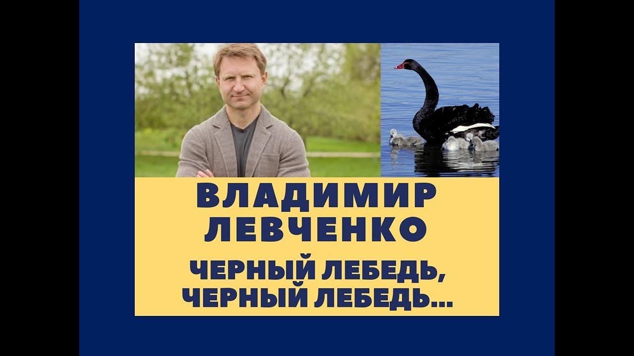 Владимир Левченко: Черный лебедь, черный лебедь