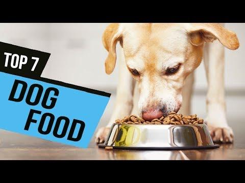 BEST DOG FOOD! (2020)