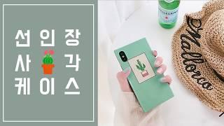 [미퓨어] 사각 선인장 아이폰 특이한 케이스