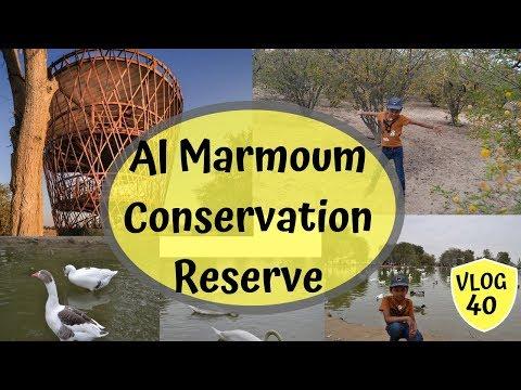 Al Marmoum Conservation Reserve I  Al Qudra !!!