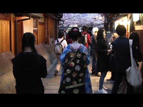 【Kyoto】春の京都を訪れる Visit Kyoto in Spring