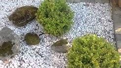 Kivipuutarha
