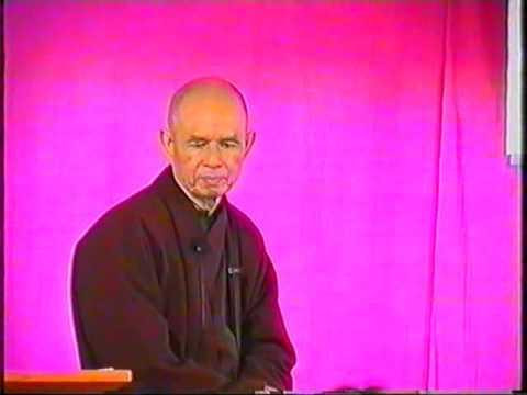 Thich Nhat Hanh - L'art d'être heureux (Retraite francophone, 07/05/2004) - Revenez à vous-même