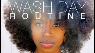 SUPER EASY Wash Day + Detangle Routine | 4a - 4c Hair
