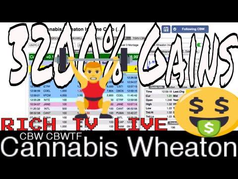 Cannabis Wheaton Income Corp (CBW) (CBWTF) - Marijuana Stocks - RICH TV LIVE