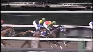 2005 ジャパンダートダービー(カネヒキリ)