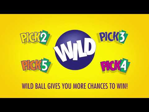 How Wild Ball Works