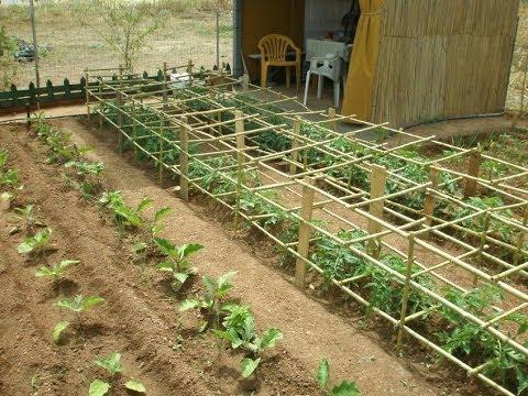 Στήριγμα για ντομάτες (supports for tomatoes)