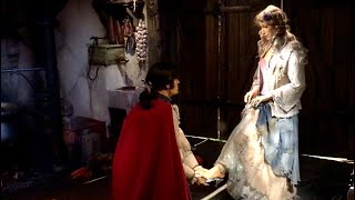 Assepoester Efteling - Sprookje Assepoester in het Sprookjesbos van De Efteling.