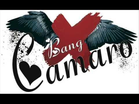 pleasure Bang camero