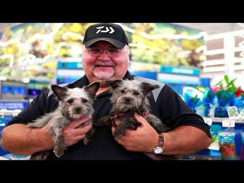 Partners For Pets - St Jacob Illinois