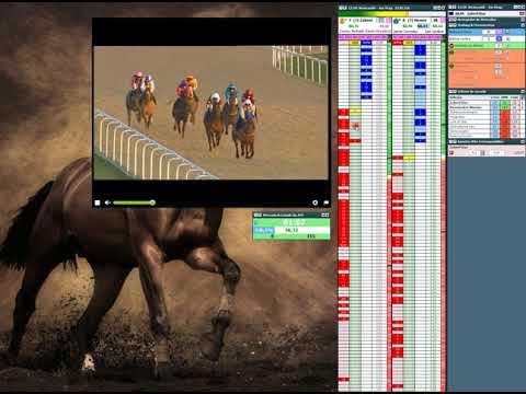 Trader Esportivo Cavalos - Horse Racing trading -21/02/18 Newcastle 1m hcap