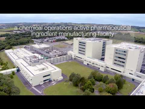 Ringaskiddy, Cork is home to two operations of one of the world's largest Pharmaceutical companies