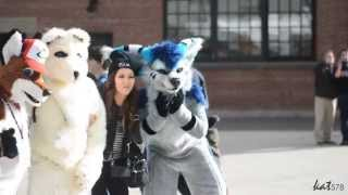 Fursuiting in Downtown TORONTO! (Toronto Furwalk 2015)