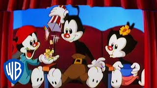Animaniacs | The Warners Attend a Concert | Classic Cartoon | WB Kids