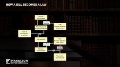 Legal Graphics - How a Bill Becomes a Law - Descriptive Animation