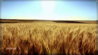 eva cassidy fields of gold sting cover