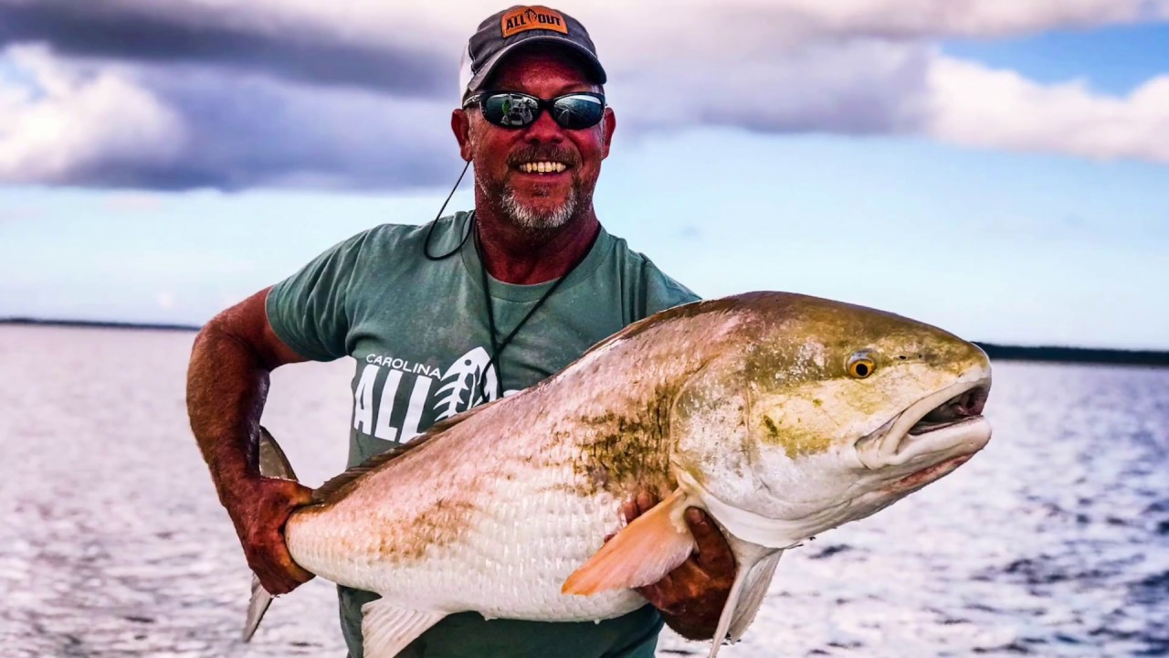 Tactics on How to catch Bull Red Drum